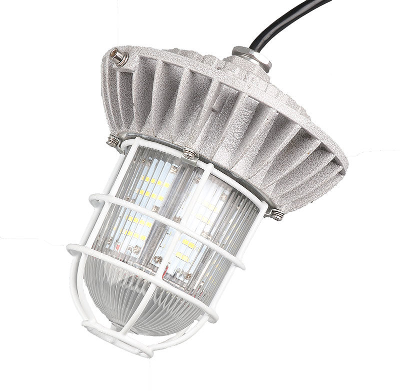 Explosion proof flameproof lamp lighting fixture Exd IIBT4